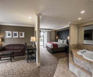 Luxurious Room with Amenities near San Clemente State Beach